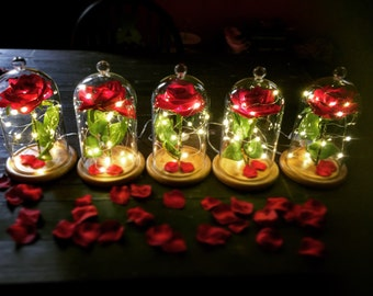 Enchanted rose bell jar beauty and the beast inspired