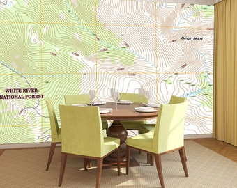 Topo Maps & Charts Wall Mural - Entire USA Available