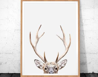 Deer Antlers Print, Deer Print, Deer Wall Art, Animal Print Nursery, Antlers Art Print Deer Head, Deer Antlers, Nursery Decor, Deer Poster
