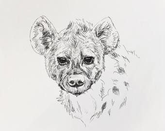 Hyena, hyena art, animal art, wild animals, black and white art, animal illustration, pen art