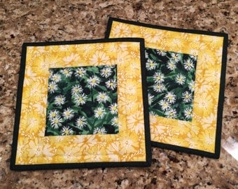 Quilted Potholders, hot pads,  spring pot holder, Quiltsy handmade, Item #137