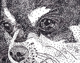 STIPPLING of a dogs face. 10x10 print of original artwork.  For the love of Lily