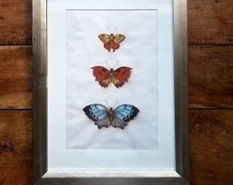 Butterfly Painting, Pastel , Original Art, Framed