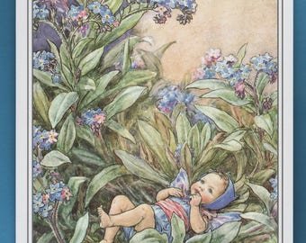 The For Get Me Not Flower Fairy,  Cicely Mary Barker Flower Fairy Book Plate Print