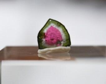 4.65 ct watermelon tourmaline slice from Kunar, Afghanistan B4