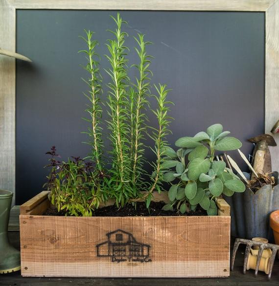 pictures of vintage herb gardens | Rustic Antique Herb Garden Kit
