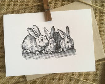 Bunny Trio Notecards