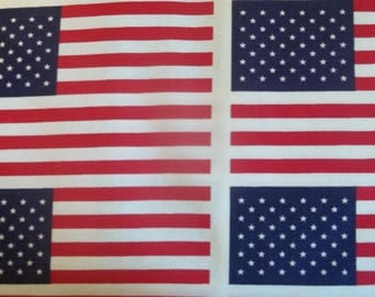 Stars and Bars allover Fabric