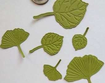 Cutting Die Set - 6 Piece Leaf Design