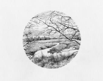 Original Ink Pen Drawing, The Gearagh Nature Reserve, Cork