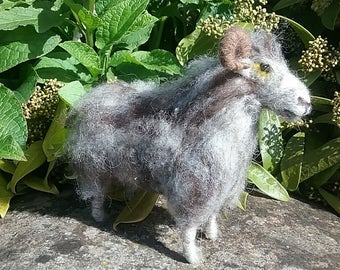 North Ronaldsay Rare breeds Sheep Needle Felt kit
