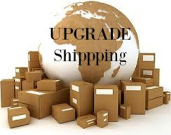 Upgrade Shipping to 2 Day Priority