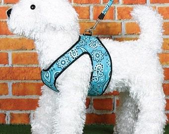 Bandana Buckeroo Dog Harness and Leash Set