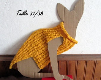 Yellow sweater for adult sphynx cat
