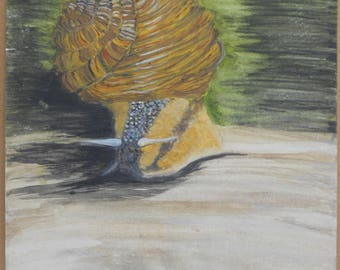 Snail Watercolor Painting
