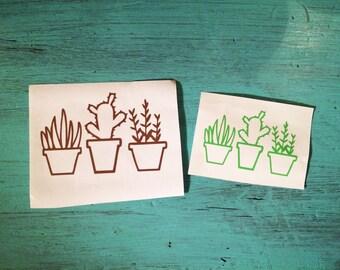 Succulent Plants Vinyl Decal