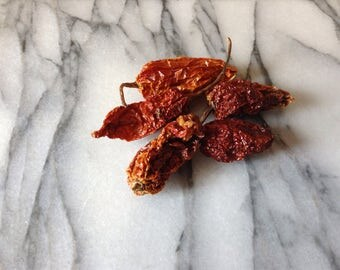 Dried organic bhut jolokia, ghost chilli, chile