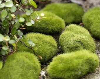 3 Pcs Miniature Artificial Green Moss Landscape