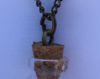 Glass Jar necklace