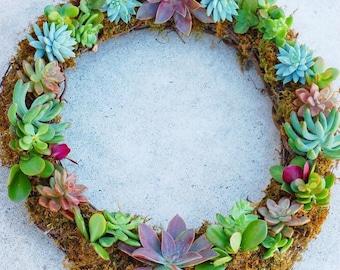 Full Round Succulent Wreath