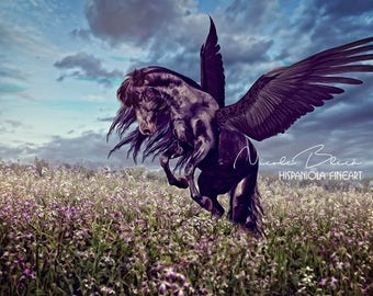 Be Wild, Pegasus, Horse,Wings,black, Flower Field, Sky, Download, Backdrop, Art, Fantasy, Living Room Decor, Photo,Manipulation