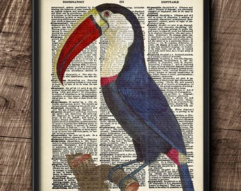 Toucan · Instant Download · Birds · Exotic ·  Dictionary · Wall · Printable · Digital File #97