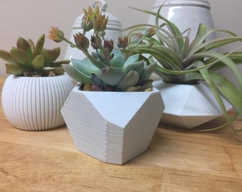 Tiny Planter Bundle