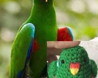 Eclectus parrot doll keychain