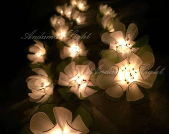 Fairy Lights-20 White Flower Fairy String Light Hanging Wedding Gift Party Patio Wall Floor Garden Bedroom String Lights Indoor Lights.