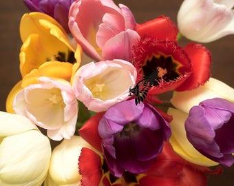Tulips newborn backdrop, tulips composing, spring theme, tulips digital backdrop