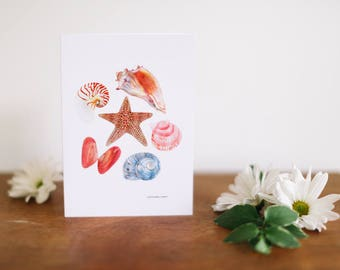 Sea Shell Greeting Card and Note Card