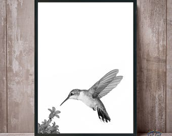 Hummingbird Print, Hummingbird Art, Hummingbird Wall Art, Black White, Bird Print, Hummingbird Poster, Hummingbird Photo, Kids Room Decor