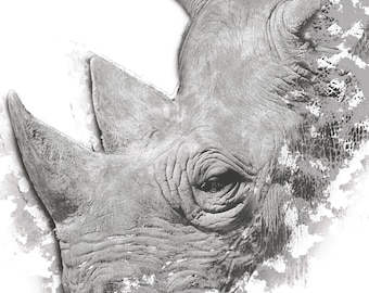 Rhino Poster 30x42cm (11x16 inches)