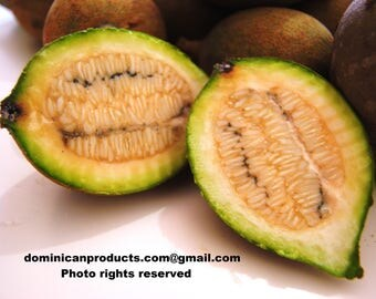 Jagua, Huito Organic seeds. FREE SHIPPING