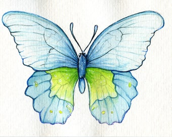 Original Blue Butterfly Painting 6x4'