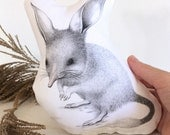 Bilby Stuffie, Baby Size. Australian Animal Softie, Plush Soft Toy. Illustration by flossy-p. Cream and gold back.