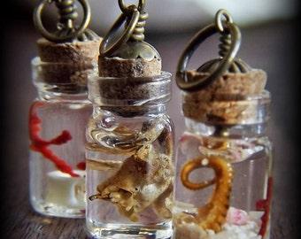 Miniature Specimen Pendant