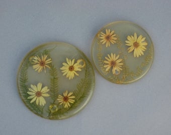 Vintage Lucite Daisy Trivets with Real Pressed Flowers 1969 New Designs Inc Made in USA Pair Acrylic Trivets