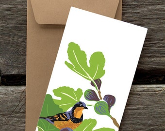 Varied Thrush in Fig Tree : Pack of 8 eco-friendly flat cards