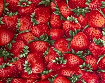 Strawberry fabric 1/2 yard x 42 inches