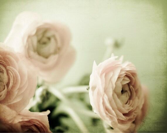 Pastel flower photography ranunculus flowers mint green pale pink wall art nursery decor 'Sweet Nothings'