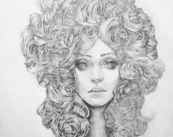 Original Pencil Drawing - Camelia
