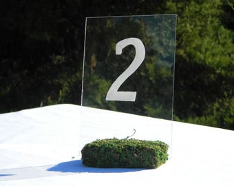 Table Number Holder + Moss Table Number Holders + Rustic chic wedding decor (3inch)- Set of 10