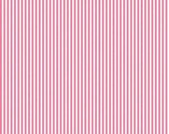 Riley Blake Designs, 1/8 Inch Stripe in HOTPINK (C495)