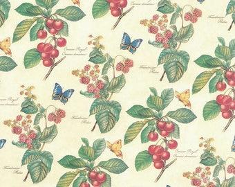 Fruit & Butterfly Print Italian Paper ~ Kartos Italy K132