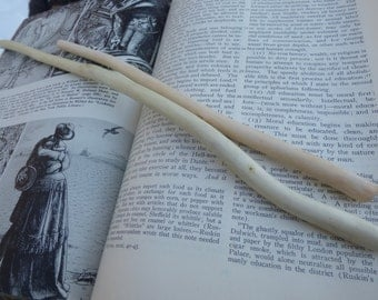 alder magic wand blank - harvested w/love, silky smooth wood for your diy wand