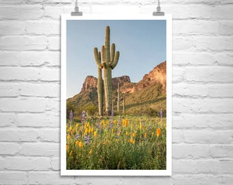Tucson, Desert Cactus, Landscape Photograph, Picacho Peak, Saguaro Cactus, Wildflowers, Cactus Picture, Sonoran Desert, Vertical Art, Gift
