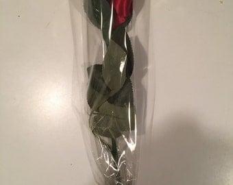 Red long stem rose, red rose, rose stem