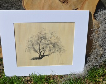 Conquistador Tree Art Print on Wood Veneer - Pen and Ink Drawing - 11x14 - Savannah, Georgia