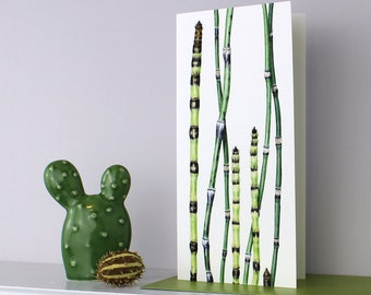 Botanical Card-Ornamental Grass Illustration-Card and Bookmark set-Card for Exotic plant lovers-Gift for Fathers Day-Watercolour Plant Card